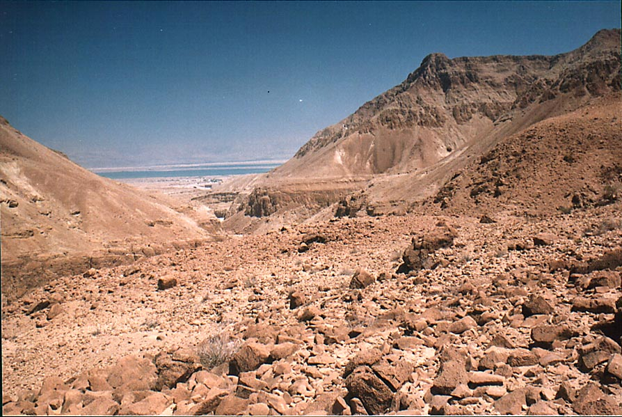 A terrace and opening of Tseelim Canyon to Dead...road from Masada. The Middle East