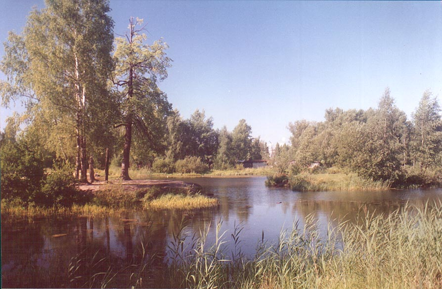 A lake in northern part of Sosnovka Park. St.Petersburg, Russia