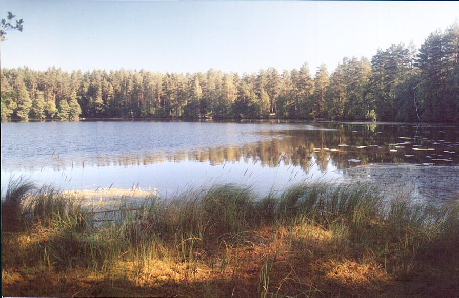 A lake 2 miles west from Kanneliarvi, 50 miles north-west from St.Petersburg. Russia