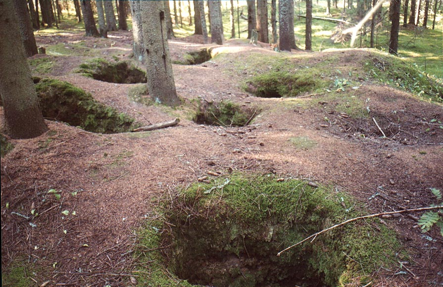 Mysterious mounds in a fir forest 2 miles west...north-west from St.Petersburg. Russia