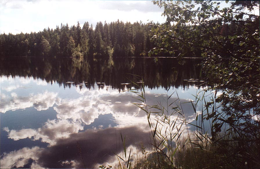 A lake 1 mile west from Kanneliarvi, 50 miles north-west from St.Petersburg. Russia