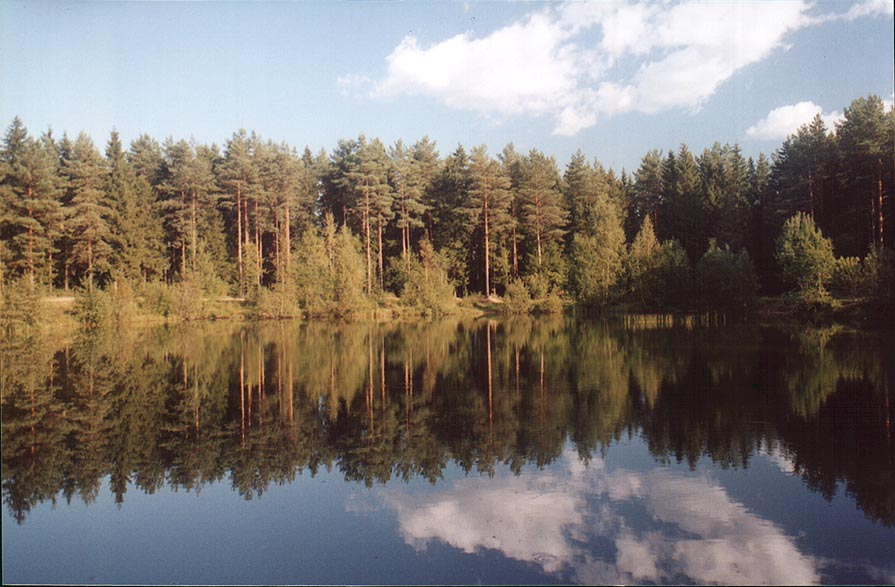 A small lake north from Kavgolovo Lake 9 miles north from St.Petersburg. Russia