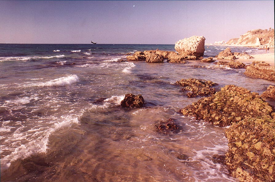 Decaying ruins of an ancient harbour fallen in...in southern Ashkelon. The Middle East