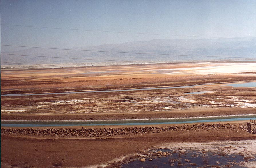 View of swampy area in southern part of the Dead Sea from a bus. The Middle East