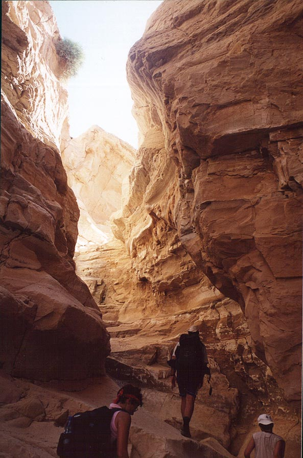 A narrowing wadi in Tseelim Canyon, 3.5 miles north-west from Masada. The Middle East