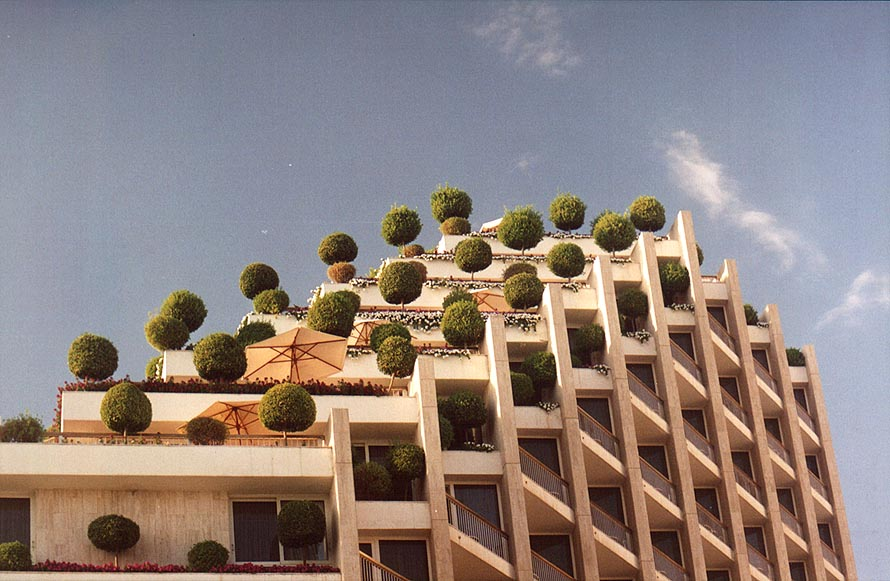 A tall hotel with trees. Eilat, the Middle East