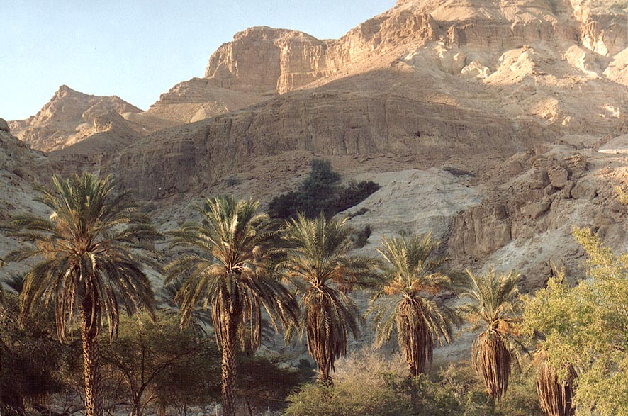 Entrance to Ein Gedi park, at evening. The Middle East