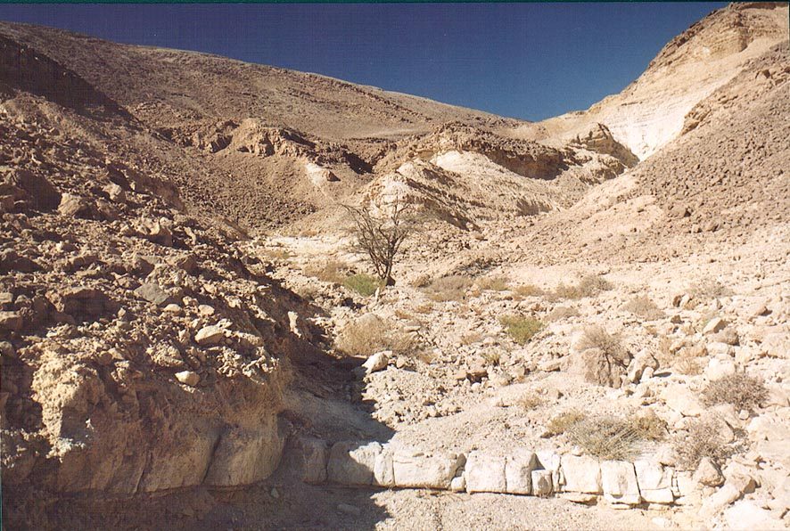 A wadi near Roded ascent, 4 miles north-west from Eilat. The Middle East