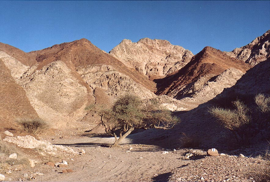 Western slopes of Mount Shahmon, 2 miles north-west from Eilat. The Middle East