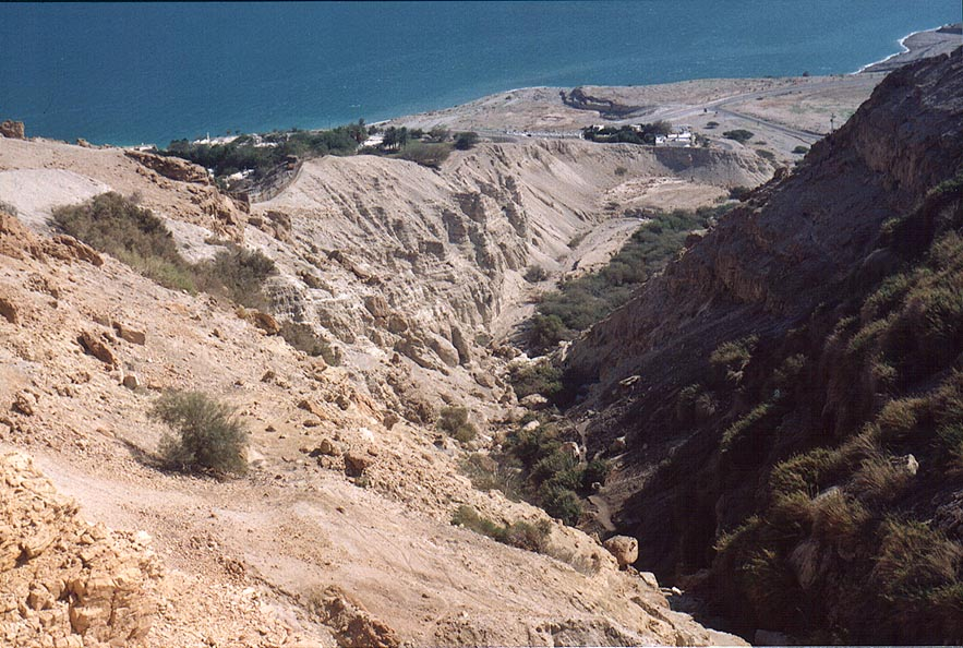 David creek in Ein Gedi, view from Zafit Trail above En Gedi Field School. The Middle East