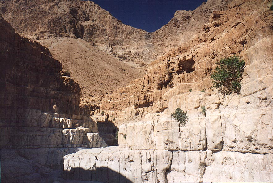 Upper part of Dry Canyon of David creek in Ein Gedi. The Middle East