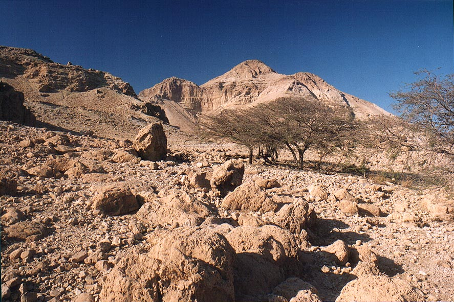 A small plateau near En Gedi spring in Ein Gedi. The Middle East