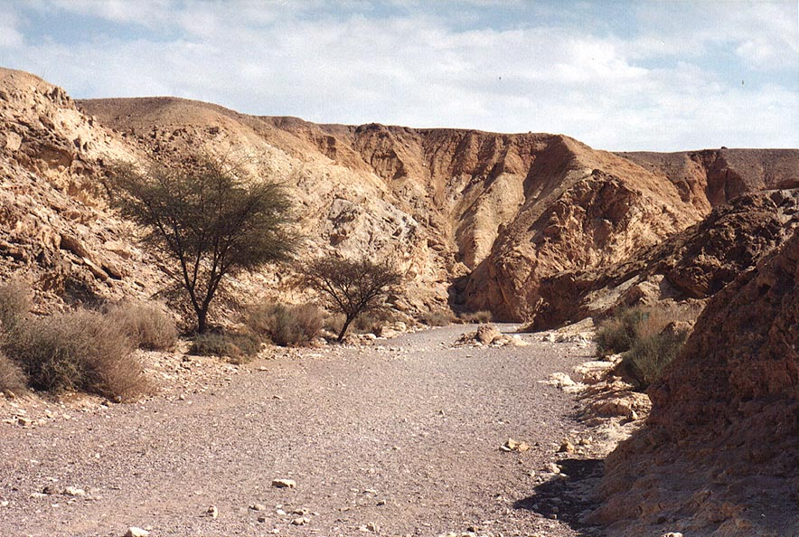 Nahal Shani river above Red Canyon, 9 miles north from Eilat. The Middle East