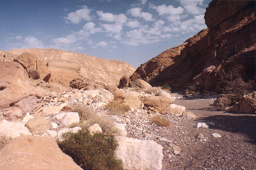 Nahal Shani wadi approaching Nahal Raham, 8 miles north from Eilat. The Middle East