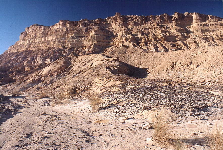 View of Mount Ardon in Ramon Crater (which is...from the south. The Middle East