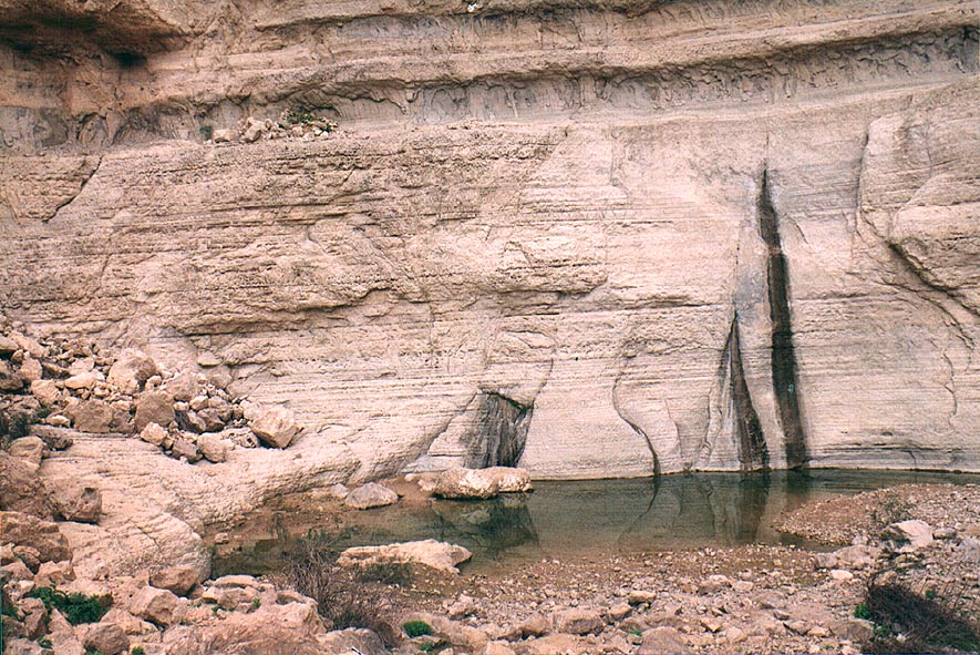 A pool under a big fall at the end of Mishmar canyon, near Dead Sea. The Middle East