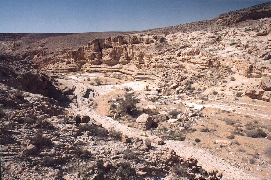 Upper part of Nahal Yamin canyon, 8 miles south-east from Yeroham. The Middle East