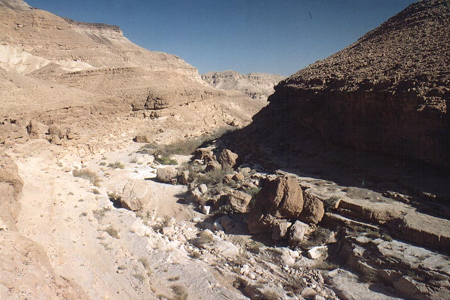 Nahal Hatira wadi ascending to En Yorqe'am spring...east from Yeroham. The Middle East