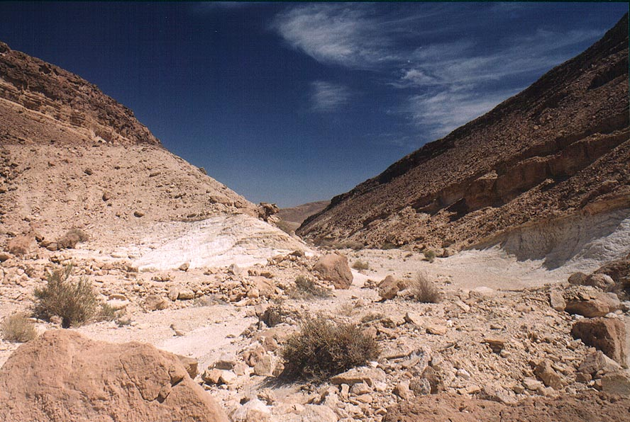 Nahal Raham wadi 5 miles north from Eilat. The Middle East