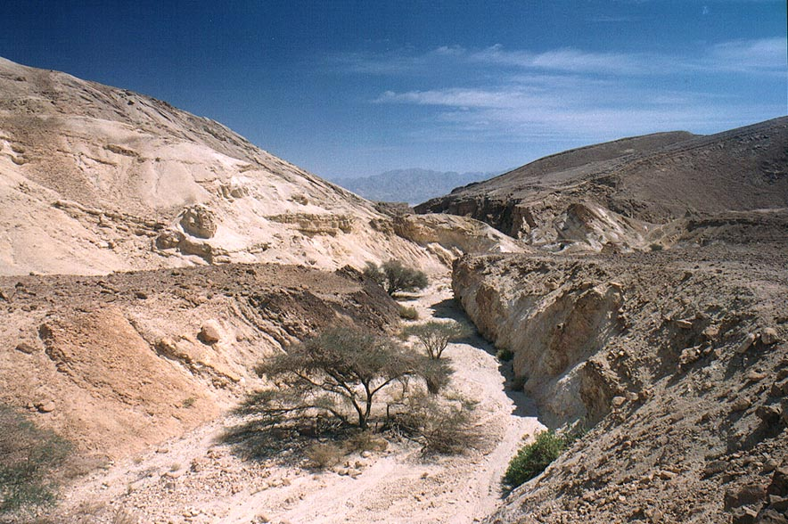 Nahal Shehoret wadi 5 miles north from Eilat. The Middle East