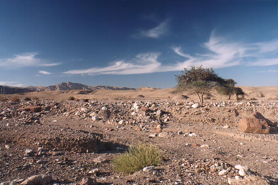 Nahal Roded wadi on Arava Valley 2 miles north from Eilat. The Middle East