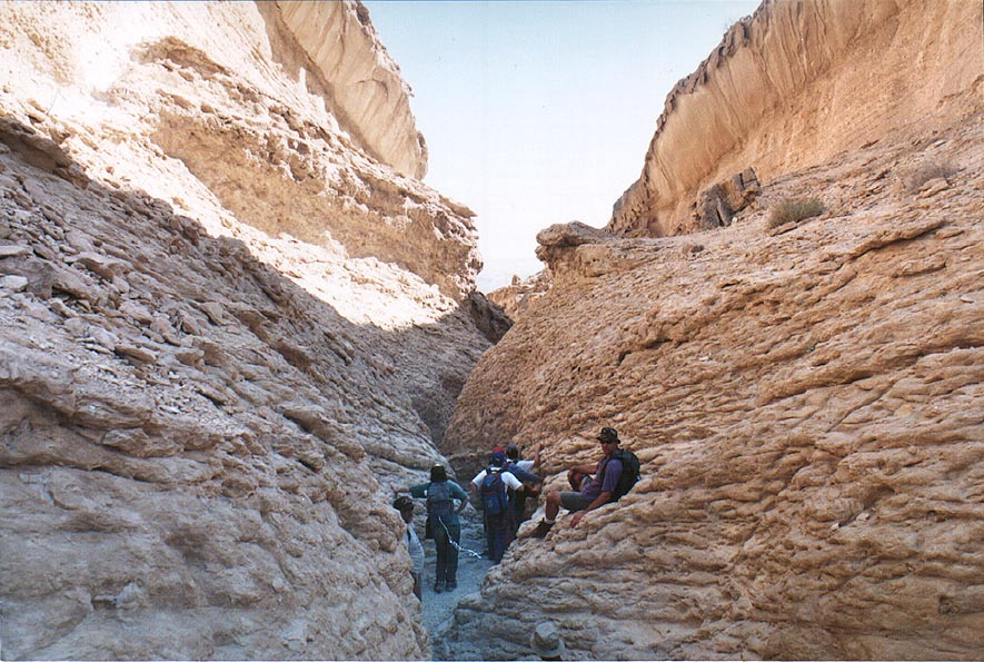 Canyon of Nahal Gov wadi, 13 miles east from Yeroham. The Middle East