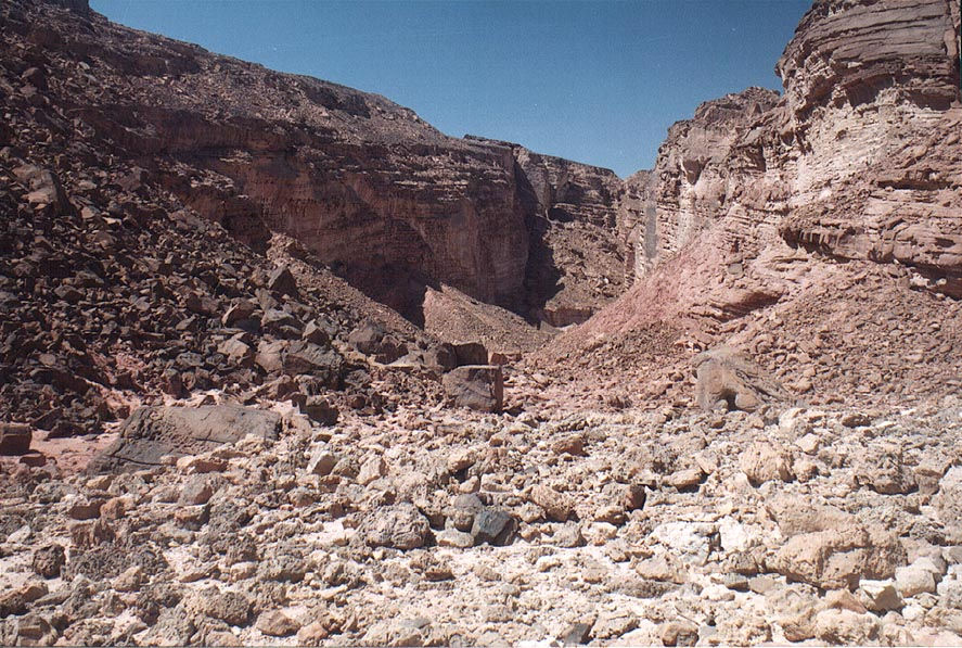 Upper Nahal Amir wadi, 5 miles north from Eilat. The Middle East