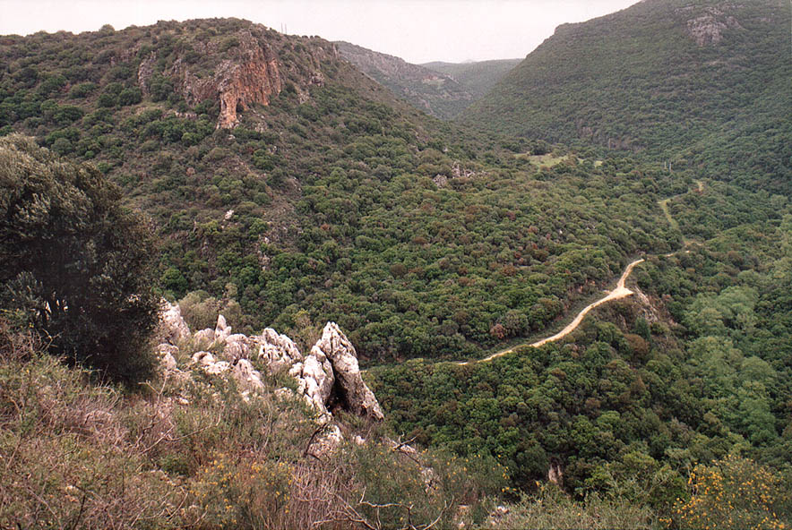 View of canyon of Nahal Keziv river from trail...from Mi'ilia. Galilee, the Middle East