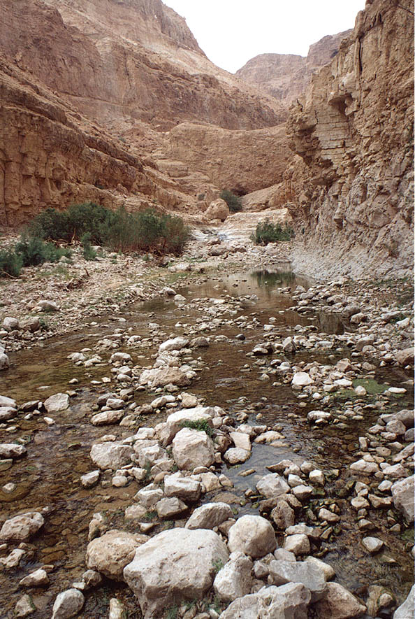 Nahal Arugot river in Ein Gedi park. The Middle East