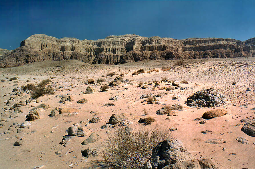 Timna stream and cliffs near ancient copper mines...north from Eilat, the Middle East