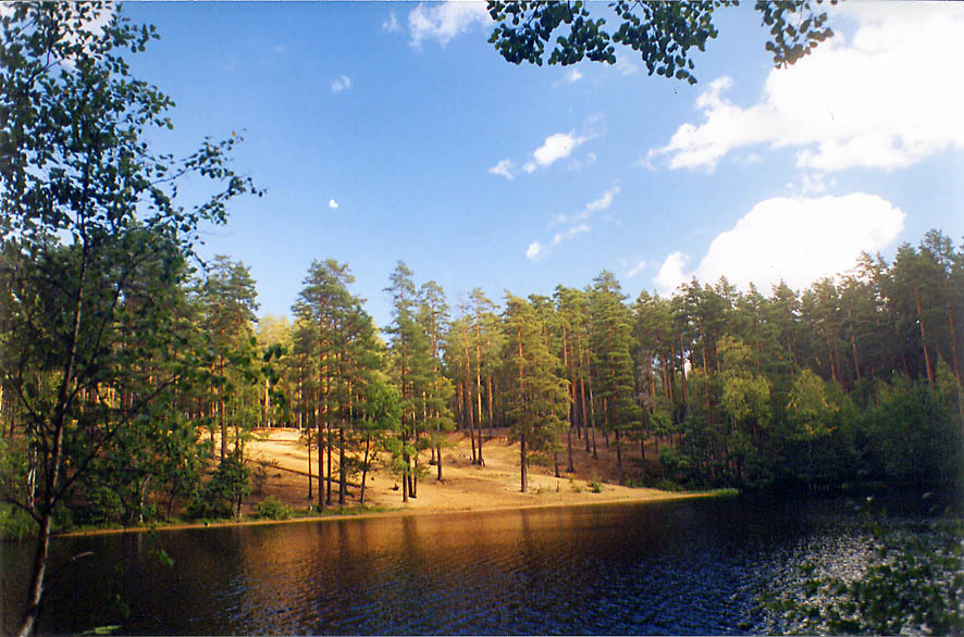 A lake near 67-th km train station 40 miles north from St.Petersburg. Russia