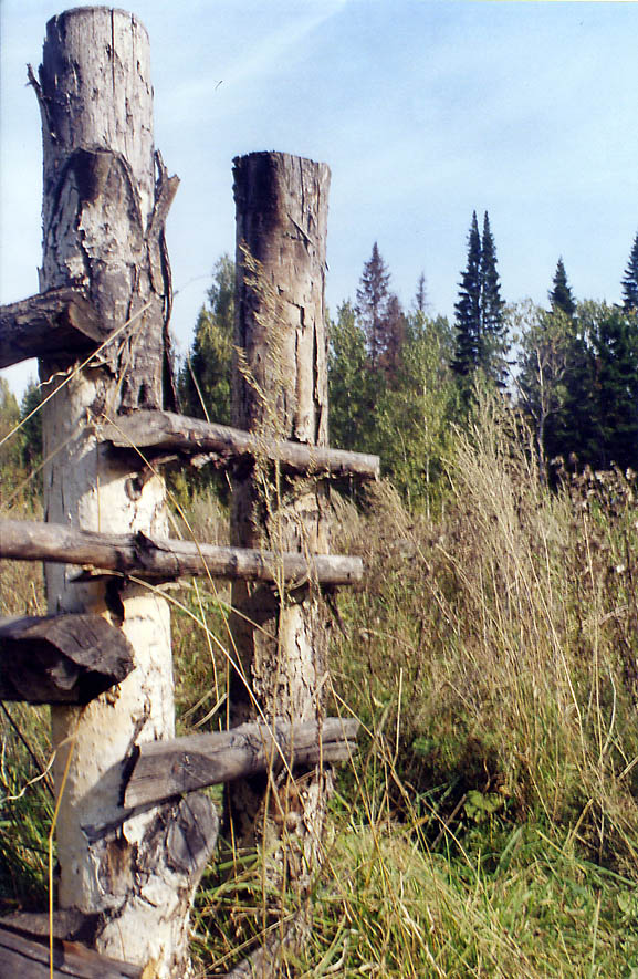 A cow fence of a meadow near a small mining city...near Kemerovo in Siberia. Russia