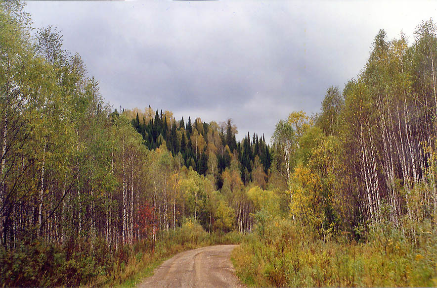 A road from Kemerovo to a remote Siberian village...populated by prisoners. Russia