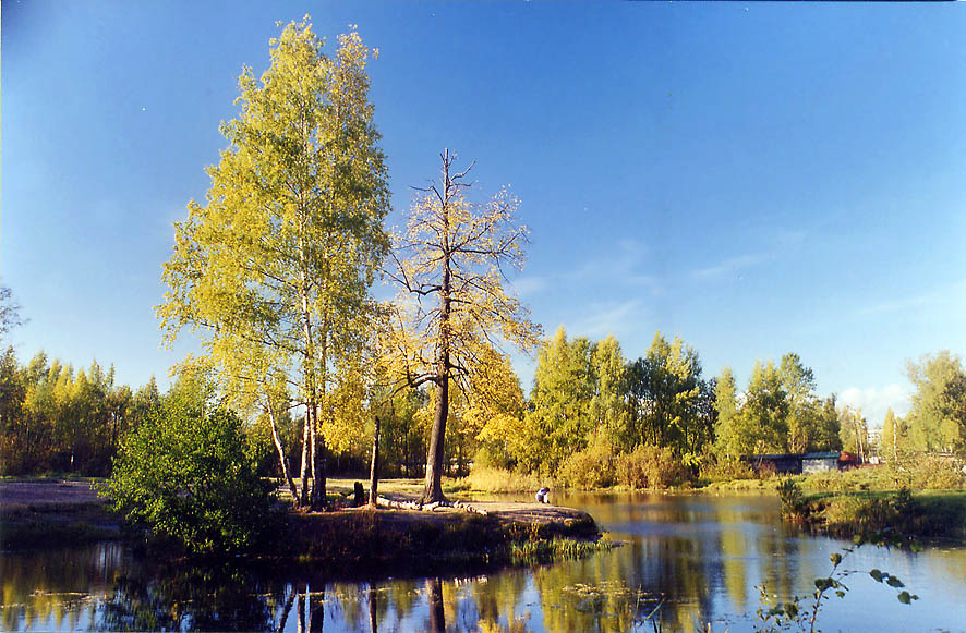 A small lake Sobachye Ozero (Vosmiorka, or Bublik...Park in northern St.Petersburg. Russia
