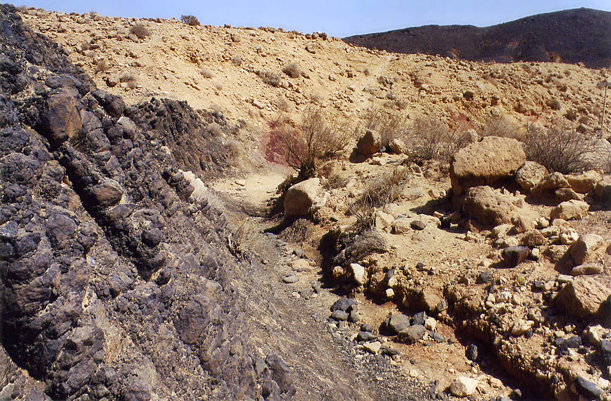 Near volcanic prisms on the bottom of Ramon Crater (Makhtesh Ramon). The Middle East