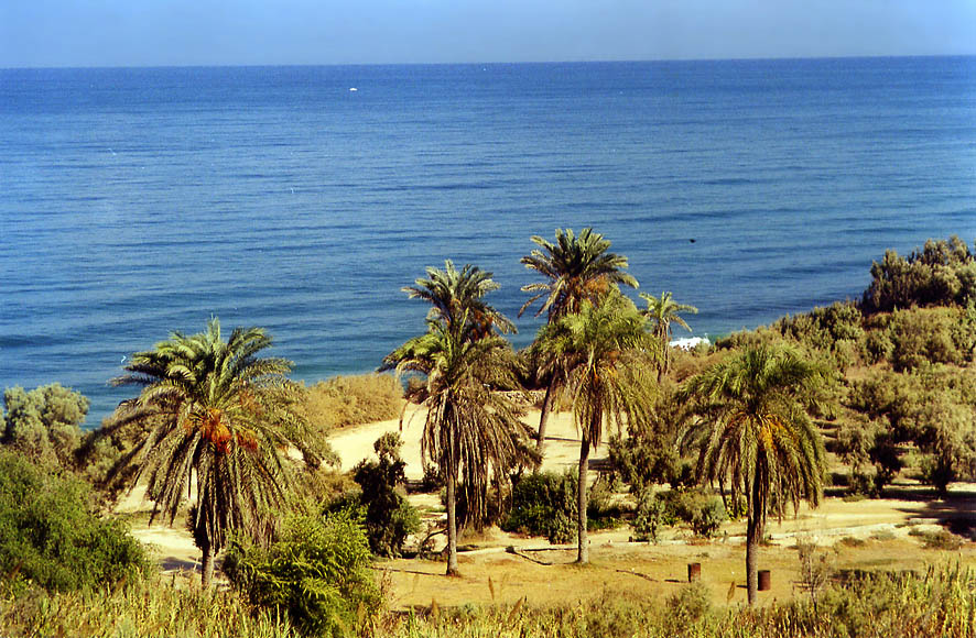 Ashkelon, Beer-Sheva, Eilat Mountains  - A park of Ashkelon. The Middle East
