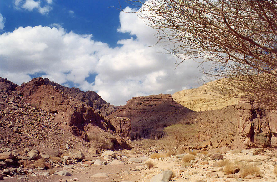 Nahal Gishron wadi 3 miles west from Eilat. The Middle East