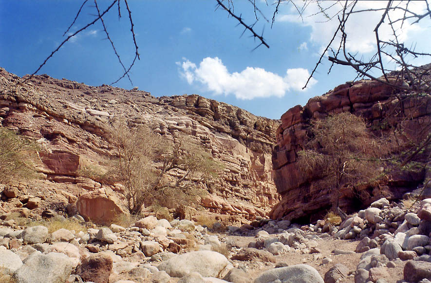 Wadi Gishron, a trail 20570 3 miles west from Eilat. The Middle East