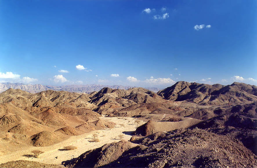 Nahal Tzefahot wadi, 3 miles south-west from Eilat. The Middle East