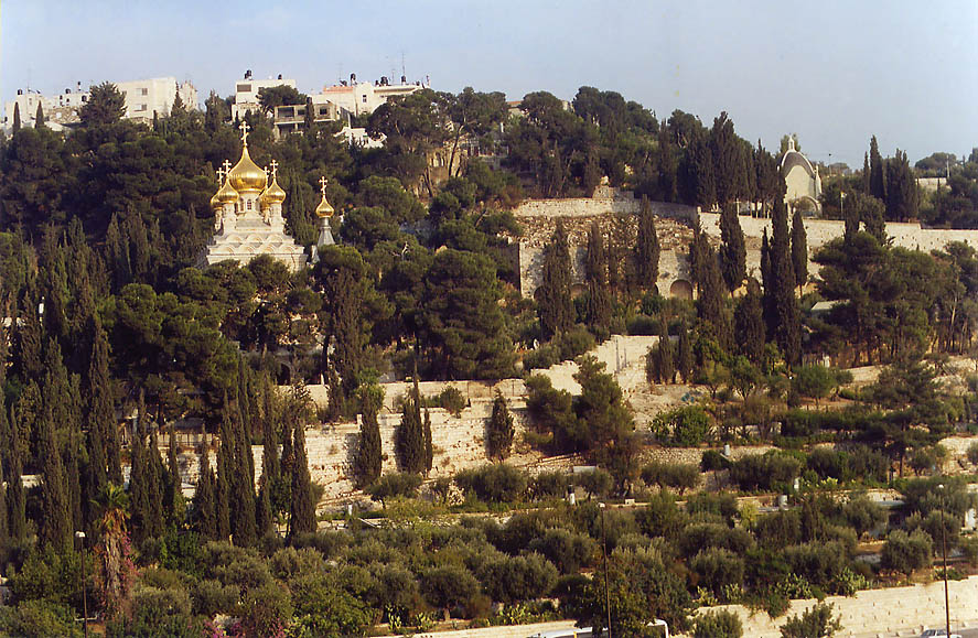 Gardens and Christian churches on slope of Mount...Ofel Rd.. Jerusalem, the Middle East