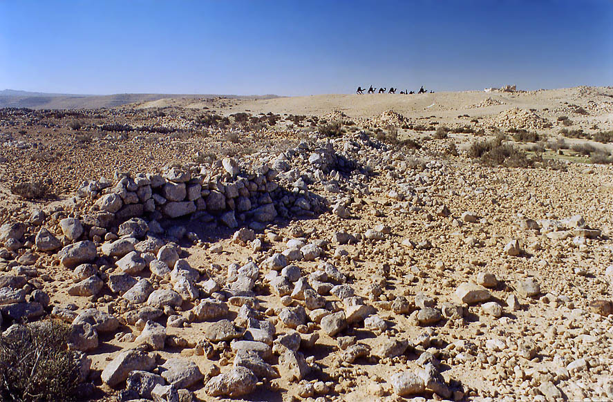 Negev Desert near archeological site of Avdat. The Middle East