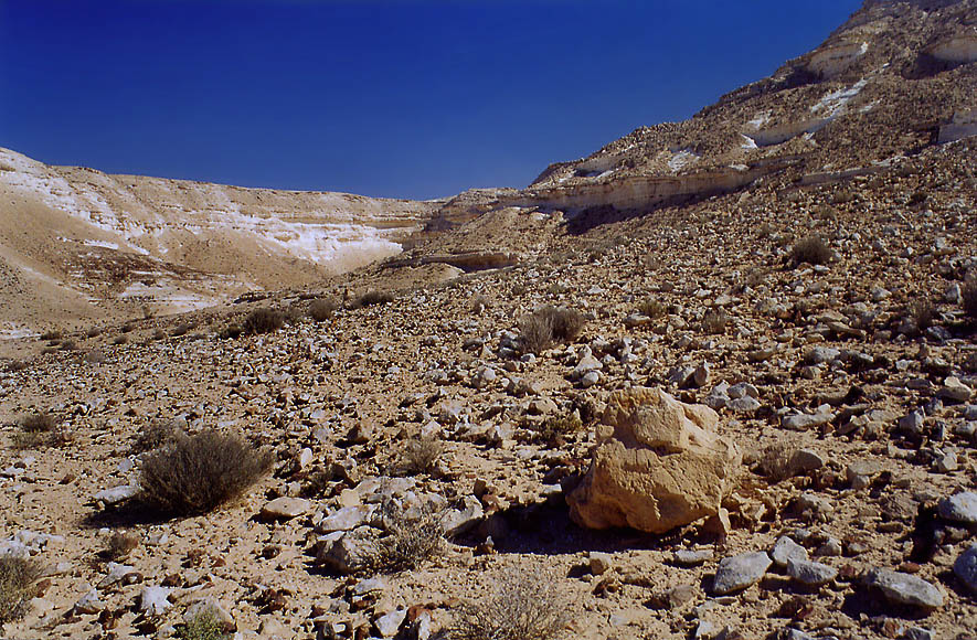Desert landscape of canyon of Nahal Akev wadi, 2.5 miles east from Avdat. The Middle East