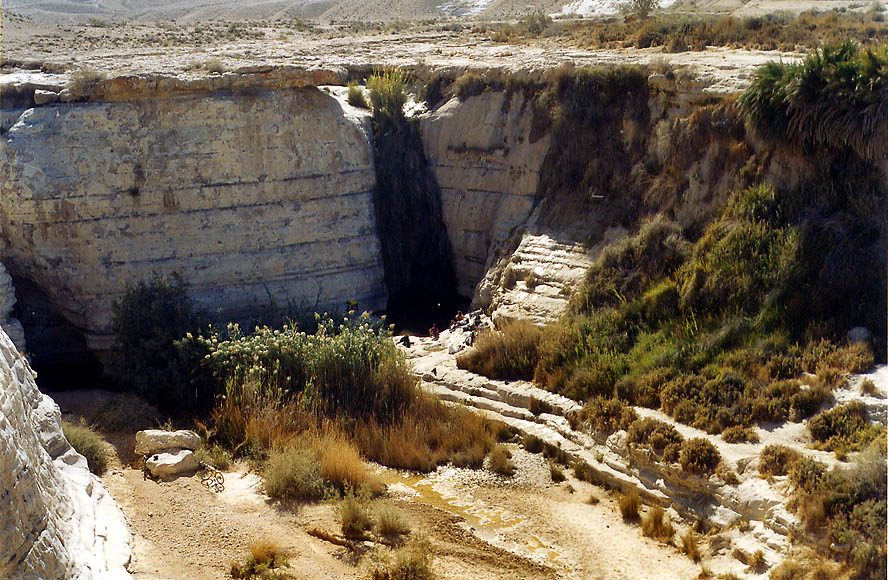 Ein Akev Tahton lower spring of Nahal Akev wadi...north-east from Avdat. The Middle East