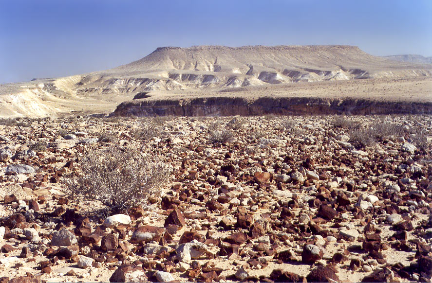 A plateau of Negev desert covered by flint stones...College at Sde Boker. The Middle East