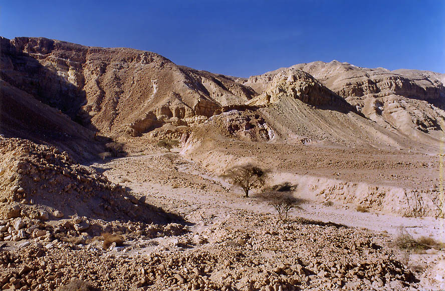 View from Wadi Roded north from Eilat. The Middle East