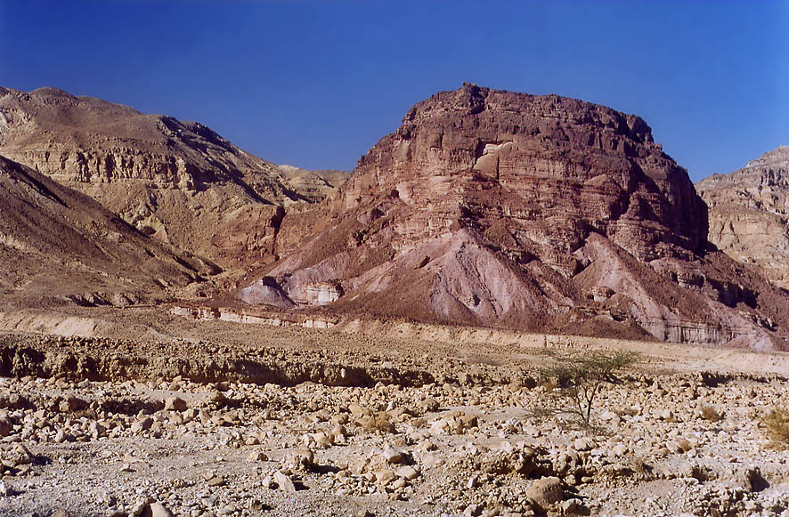 Wadi Roded north from Eilat. The Middle East