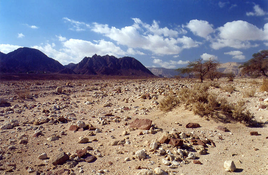 Timna Valley and Massif Timna in background, 13 miles north from Eilat. The Middle East