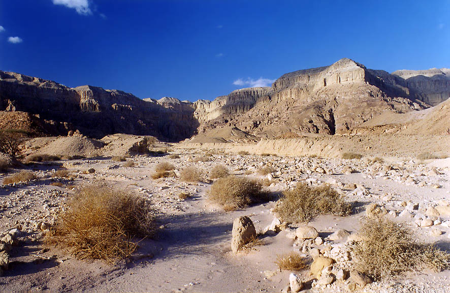 A wadi in western Timna Park, 13 miles north from...hour before sunset. The Middle East
