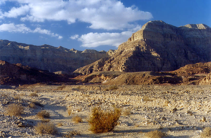 Timna Stream and Cliffs in Timna Park, 13 miles...hour before sunset. The Middle East