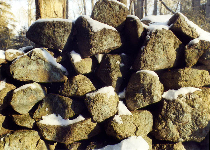 Abandoned stone wall in a forest from Tattapanum Trail near Fall River, Massachusetts